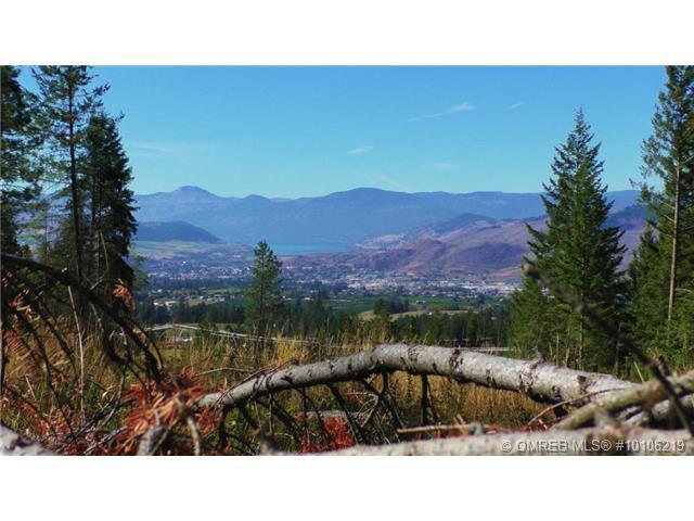 6575 Dixon Dam Road,, Vernon, BC V1B 3J9 (MLS #10106219) :: Walker Real Estate