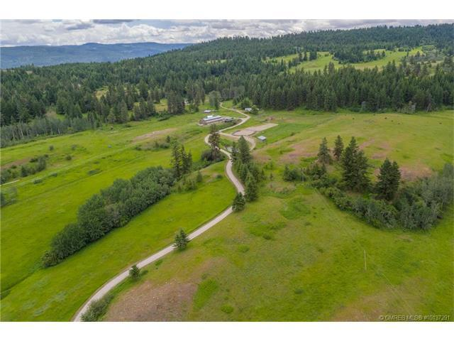 315 Commonage Road,, Vernon, BC V1H 1G4 (MLS #10137291) :: Walker Real Estate