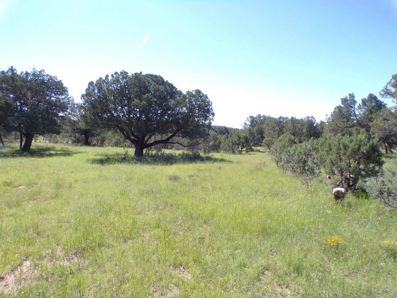 27 High Meadow Ln - Photo 1