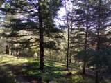 28 Sherwood Forest - Photo 31