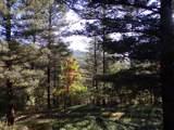 28 Sherwood Forest - Photo 32