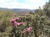 40 Maruche Canyon Rd - Photo 13