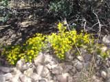 40 Maruche Canyon Rd - Photo 23