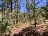 63 Sherwood Forest - Photo 41