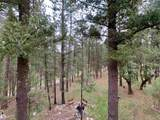22 Timber Wolf - Photo 40