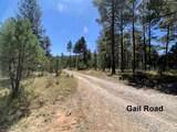 17 Gail Rd - Photo 10