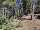 500 Woodlands Way - Photo 17