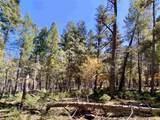 500 Woodlands Way - Photo 22