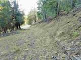 Wimsatt Loop - Photo 32