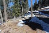 Lot 4 Big Bear Way - Photo 22