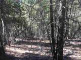 Dry Canyon Rd - Photo 3