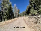 12 White Tail Pl - Photo 34