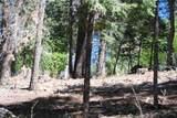 Sugar Pine Dr - Photo 2