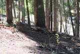 Sugar Pine Dr - Photo 9