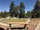 41 James Canyon Hwy - Photo 19