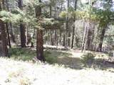 2 Bull Elk Run - Photo 1