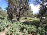 27 High Meadow Ln - Photo 15