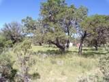 27 High Meadow Ln - Photo 16