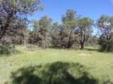 27 High Meadow Ln - Photo 6