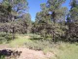 27 High Meadow Ln - Photo 7