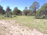 27 High Meadow Ln - Photo 9