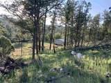 545 Walker Canyon Rd - Photo 43
