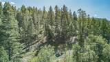 Elk Springs - Photo 1