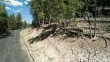 Elk Ridge - Photo 13