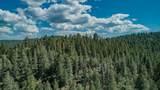 Elk Ridge - Photo 18