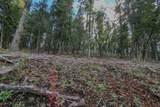 Elk Ridge - Photo 24