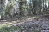 Elk Ridge - Photo 25