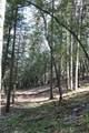Elk Ridge - Photo 27