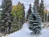 907 Sugar Pine Dr - Photo 15