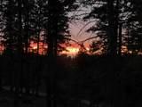 907 Sugar Pine Dr - Photo 19