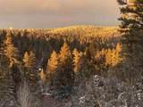 907 Sugar Pine Dr - Photo 51