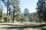 50 Sullivan Canyon Rd - Photo 53