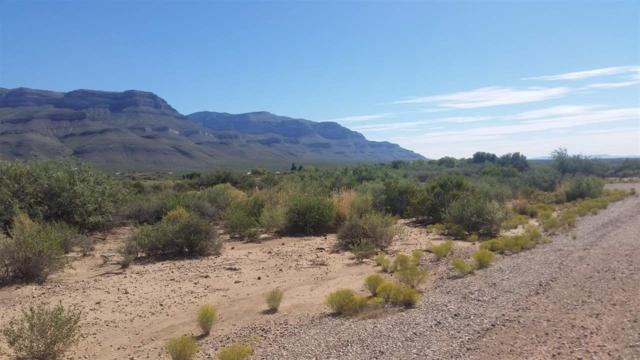 Lot #3 Elena Ct, Alamogordo, NM 88310 (MLS #153060) :: Assist-2-Sell Buyers and Sellers Preferred Realty