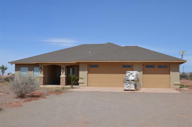 7 Wildcat Ln, Alamogordo, NM 88310 (MLS #154283) :: Assist-2-Sell Buyers and Sellers Preferred Realty