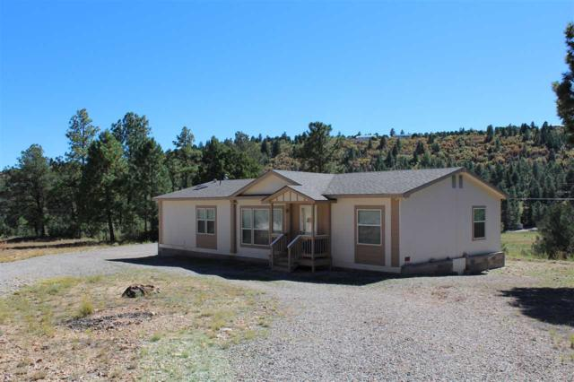 7 Milky Way, Mayhill, NM 88339 (MLS #155265) :: Assist-2-Sell Buyers and Sellers Preferred Realty