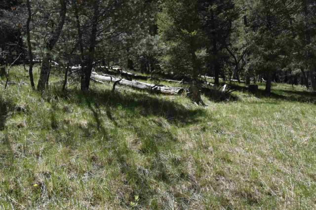Address Not Published, Mayhill, NM 88339 (MLS #156357) :: Assist-2-Sell Buyers and Sellers Preferred Realty