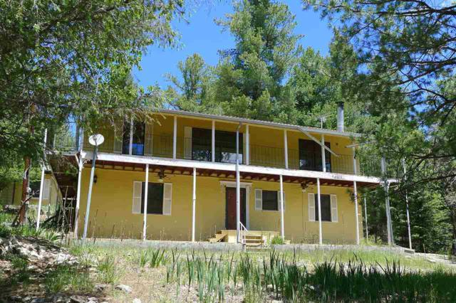 54 Sherwood Forest, Mayhill, NM 88339 (MLS #156497) :: Assist-2-Sell Buyers and Sellers Preferred Realty
