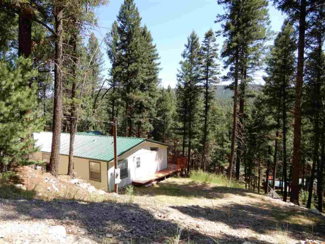 30 Cour De Leon, Mayhill, NM 88339 (MLS #156745) :: Assist-2-Sell Buyers and Sellers Preferred Realty