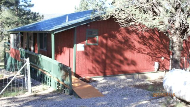 20 Gail Rd, Mayhill, NM 88339 (MLS #156948) :: Assist-2-Sell Buyers and Sellers Preferred Realty