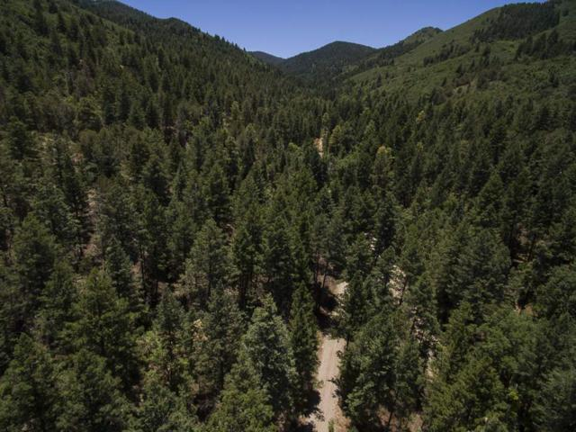355 Karr Canyon Rd, High Rolls Mountain Park, NM 88325 (MLS #157021) :: Assist-2-Sell Buyers and Sellers Preferred Realty