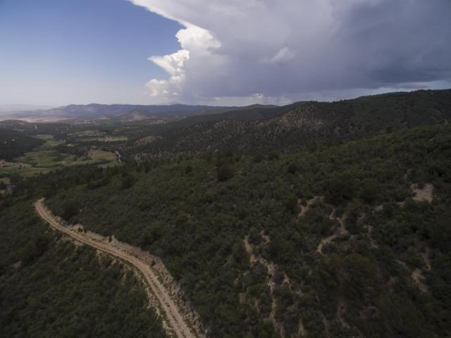 369 Karr Canyon Rd, High Rolls Mountain Park, NM 88325 (MLS #157022) :: Assist-2-Sell Buyers and Sellers Preferred Realty