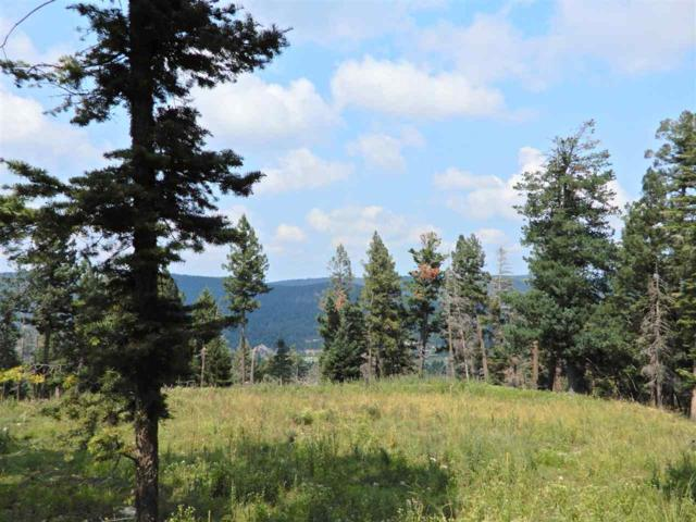 225 Big Dipper Rd, Cloudcroft, NM 88317 (MLS #157232) :: Assist-2-Sell Buyers and Sellers Preferred Realty