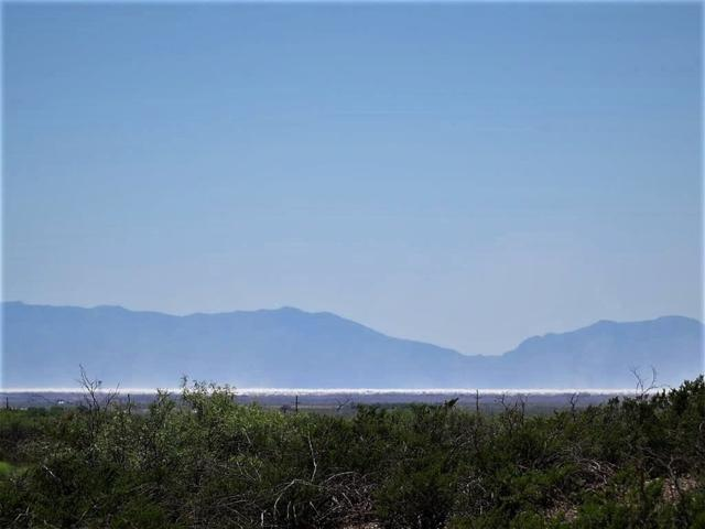 2 Mira Vista Trl, La Luz, NM 88337 (MLS #157281) :: Assist-2-Sell Buyers and Sellers Preferred Realty