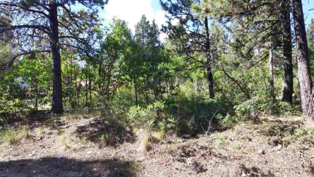 802 Victoria Ave 2,3, Cloudcroft, NM 88317 (MLS #157297) :: Assist-2-Sell Buyers and Sellers Preferred Realty