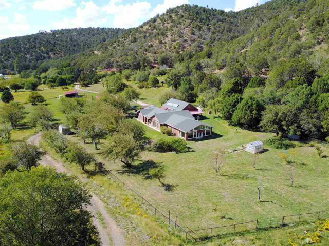 180 Haynes Canyon Rd, High Rolls Mountain Park, NM 88325 (MLS #157414) :: Assist-2-Sell Buyers and Sellers Preferred Realty