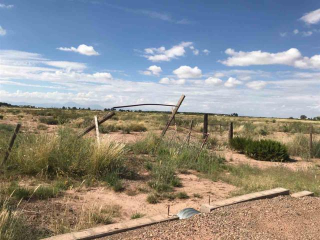 Address Not Published, Tularosa, NM 88352 (MLS #157433) :: Assist-2-Sell Buyers and Sellers Preferred Realty